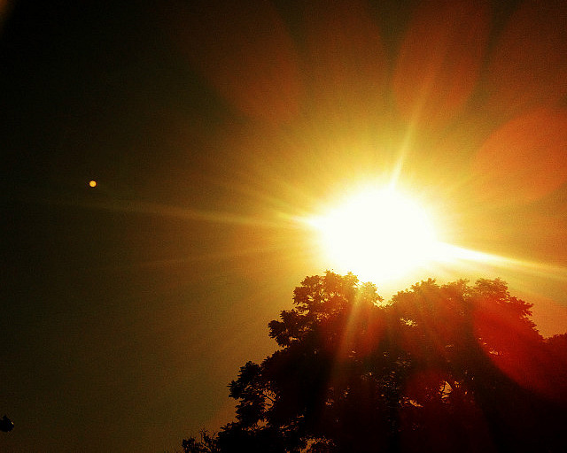 9.1333112198.a-sunny-day-in-parque-lezama
